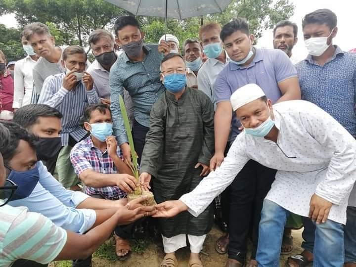 চকরিয়ায় কাকারায় ভাংগন রোধ করবে তালগাছ